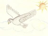 abutre-sara-bello-65-jpg