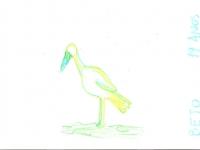 saracura-beto-19-bpp-estagiario