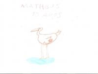 saracura-matheus-10